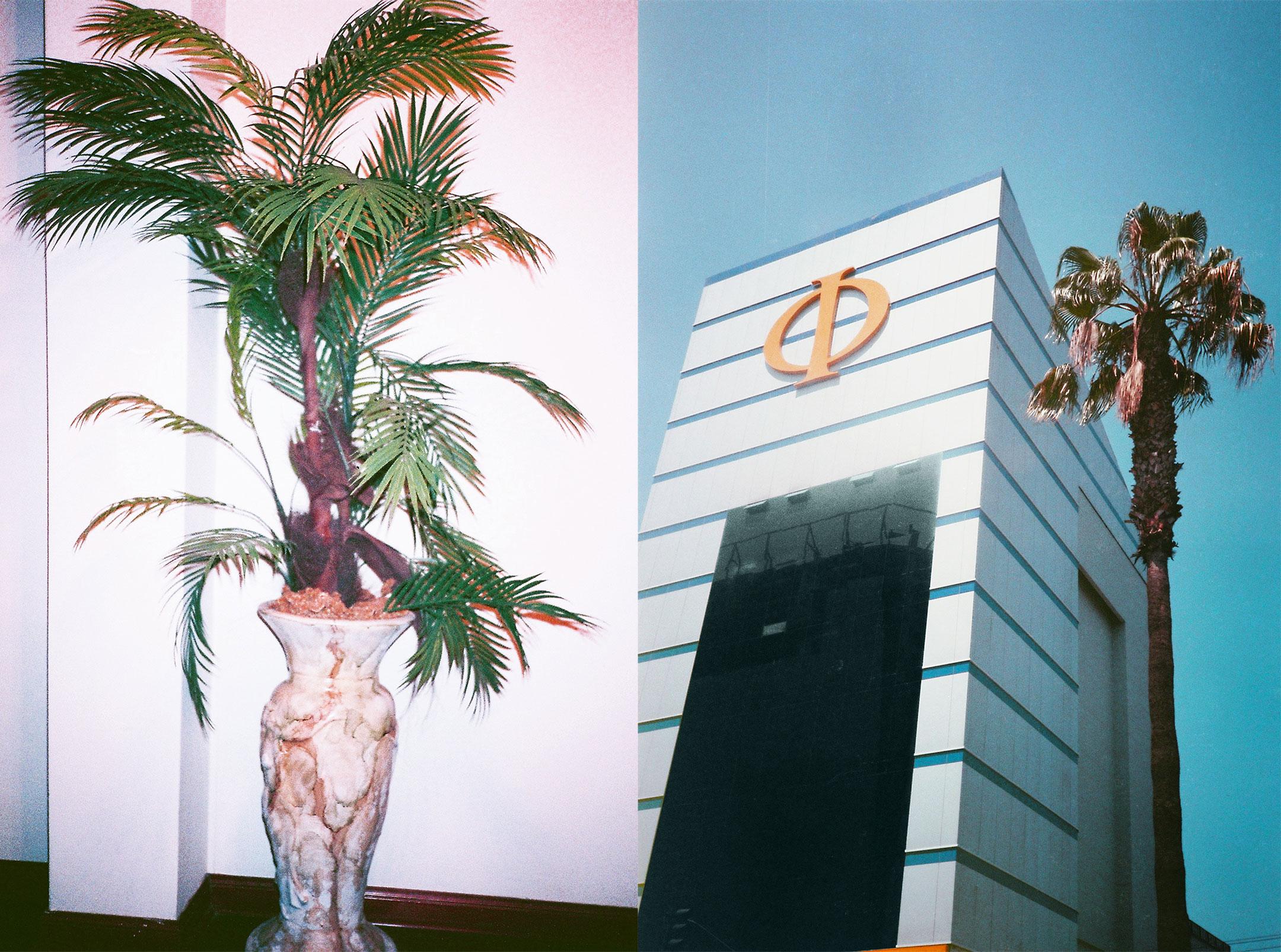 Cindy Jinette Peru. Visions